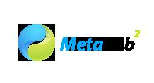 metalab1